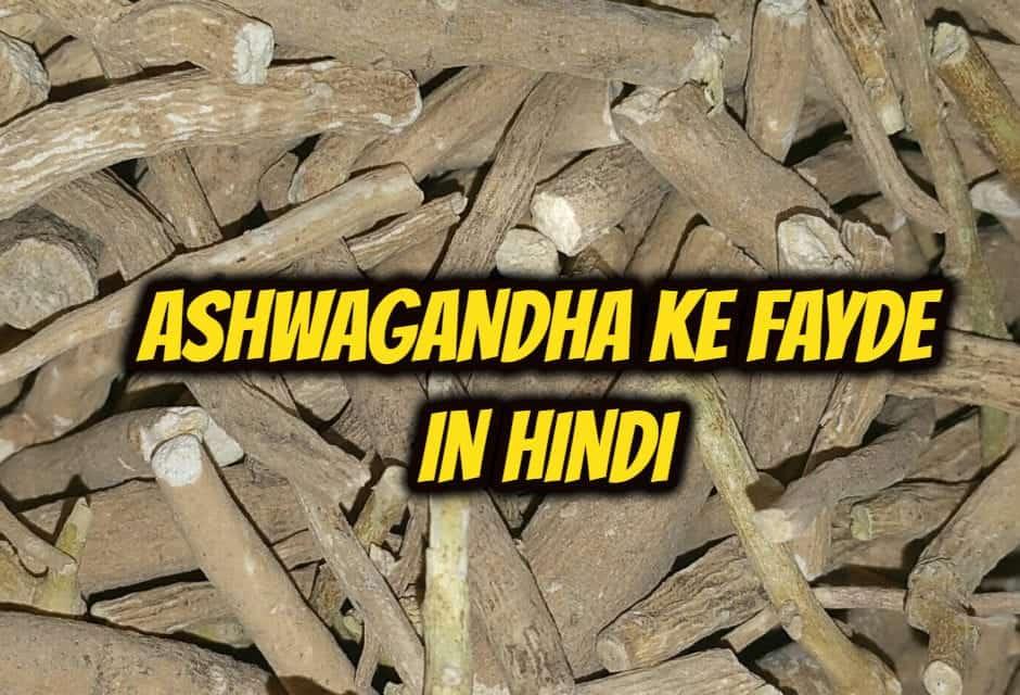 अश्वगंधा के फायदे – ashwagandha benefits in hindi