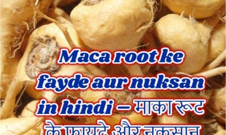 माका रूट के फायदे और नुकसान – maca root benefits and side effects in hindi