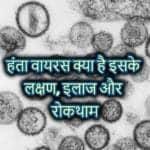 हंता वायरस क्या है इसके लक्षण, इलाज और रोकथाम