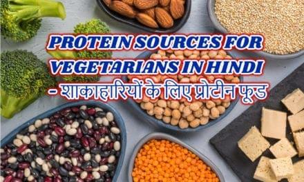 protein sources for vegetarians in hindi – शाकाहारियों के लिए प्रोटीन फूड