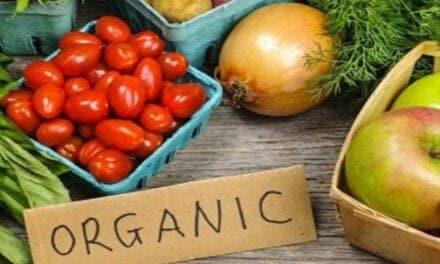 ऑर्गेनिक फ़ूड क्या होता है – what is organic food in hindi