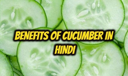 खीरा खाने के फायदे – benefits of cucumber in hindi