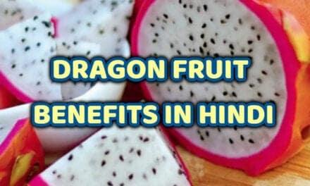 ड्रैगन फ्रूट के फायदे – dragon fruit benefits in hindi
