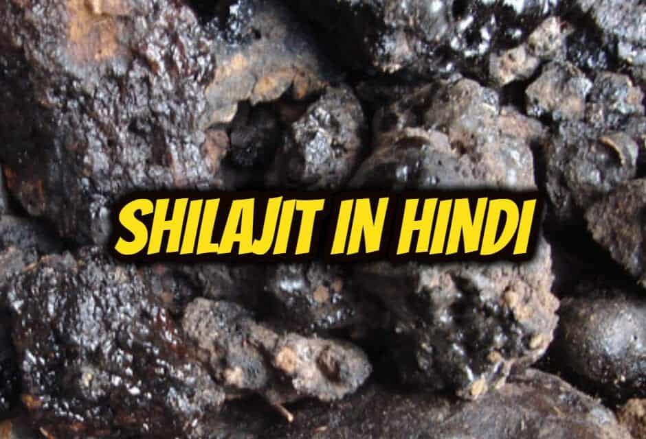 शिलाजीत के फायदे और नुकसान – shilajit in hindi