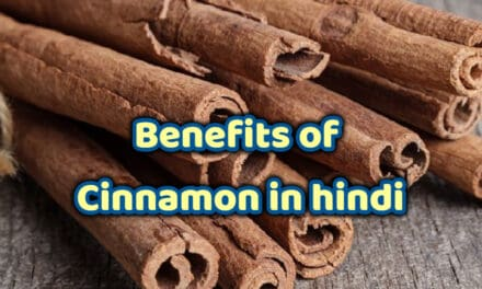 दालचीनी के फायदे – benefits of cinnamon in hindi