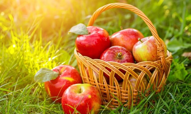 Benefits & Side effects of Apples