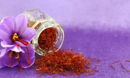 केसर के फ़ायदे – Benefits of Saffron