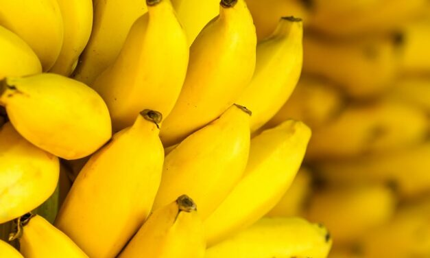 What are the advantages and disadvantages of banana?